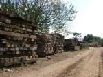 dormentes de madeira (1)